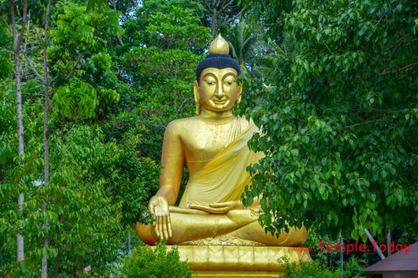 Wat Sa Pradit (วัดสระประดิษฐ์) Tambon Pho Thong, Tha Sala District, Nakhon Si Thammarat 80160, Thailand.