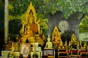 Wat Pa Nong Ya Ma (วัดป่าหนองหญ้าม้า) Tambon Nuea Mueang, Amphoe Mueang Roi Et, Chang Wat Roi Et 45000, Thailand.